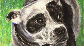 dasmine dog pastel thumb